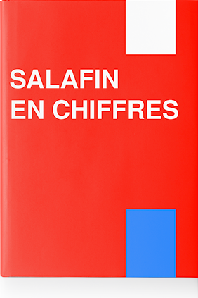 SALAFIN en chiffres 2010