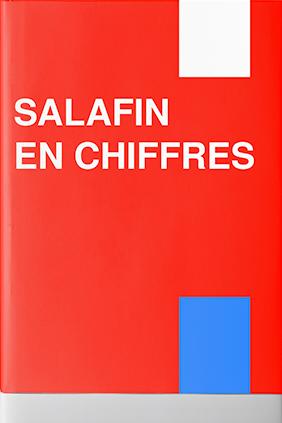 SALAFIN en chiffres 2012