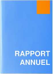 Rapport Annuel Exercice 2019