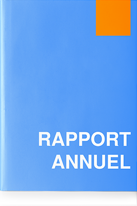 Rapport Financier Annuel 2020